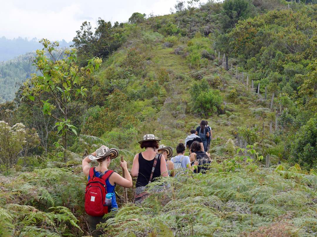 Panoramic view of hiking route in Andes mountains during Medellin tour