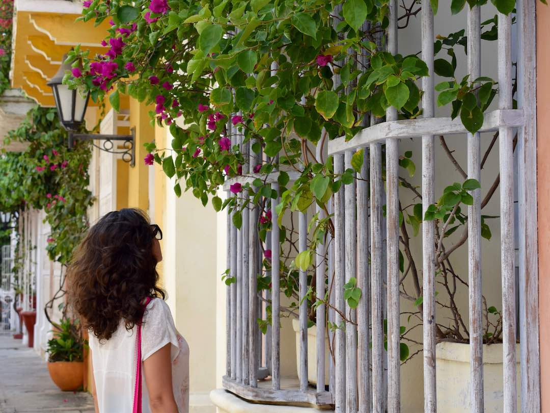 Wandering the colourful streets of cartagena as part of our 2 week tour of colombia