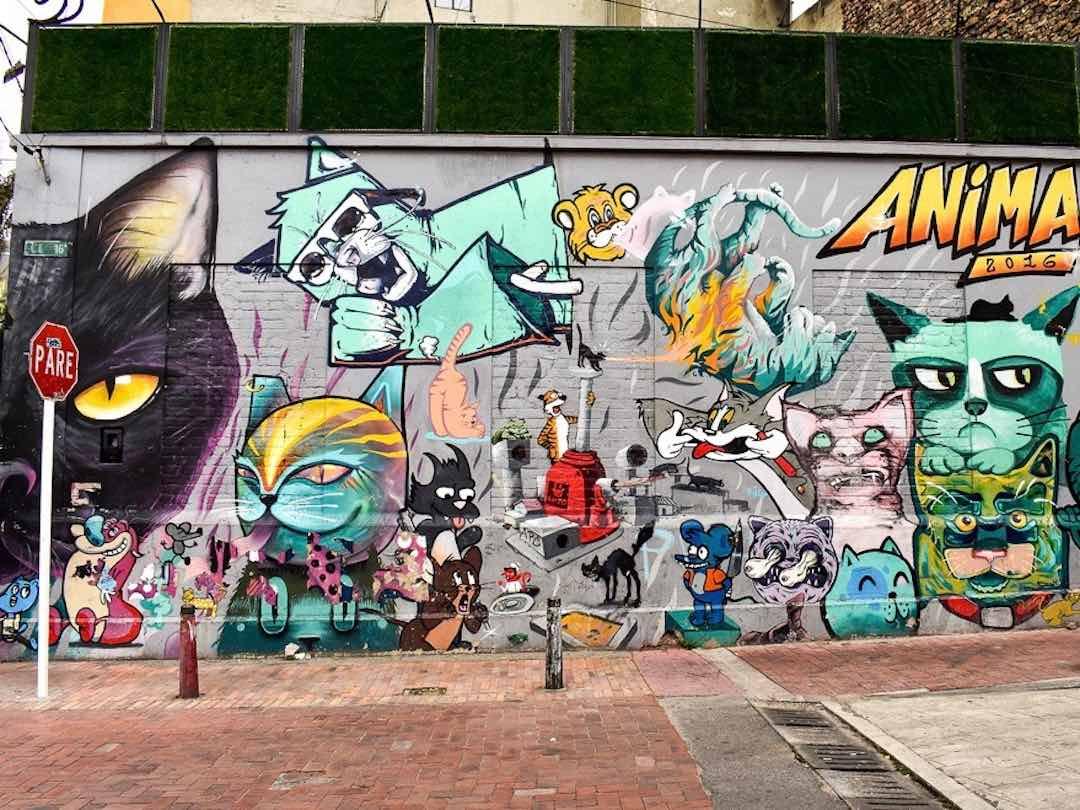 Things to do in Bogota cat graffiti