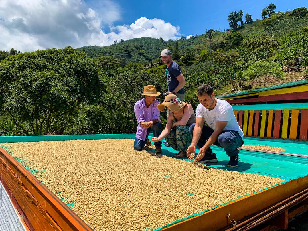 Exploring coffee farm in Colombia's coffee zone