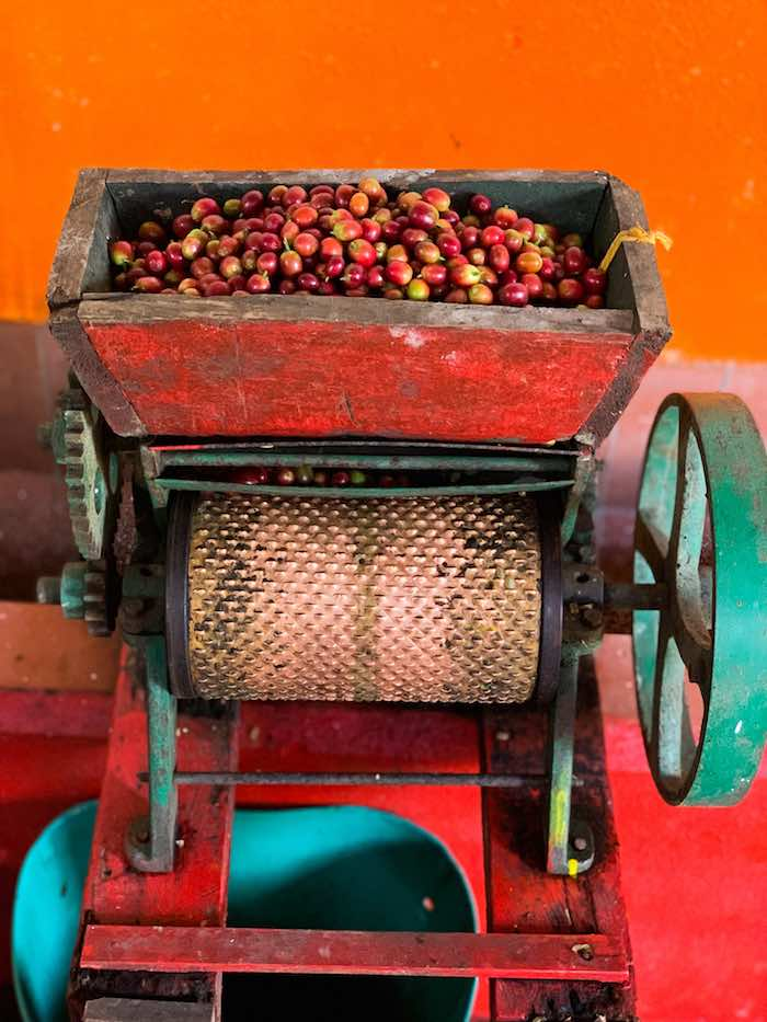 Coffee production process in Colombia