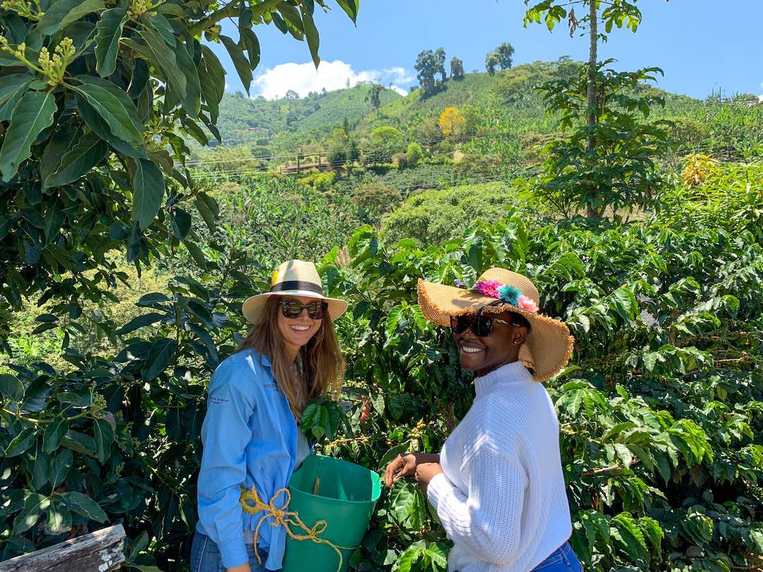 Picking coffee during our Colombia small group tour