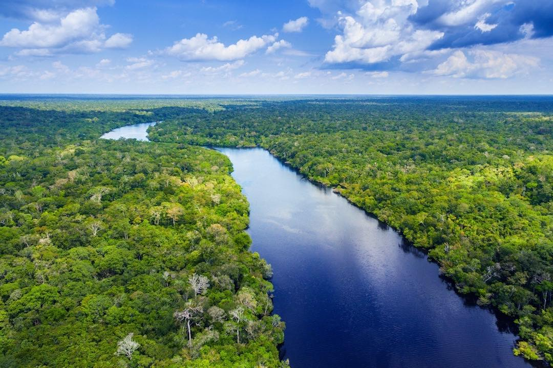 Amazon rainforest during small group tour of Peru