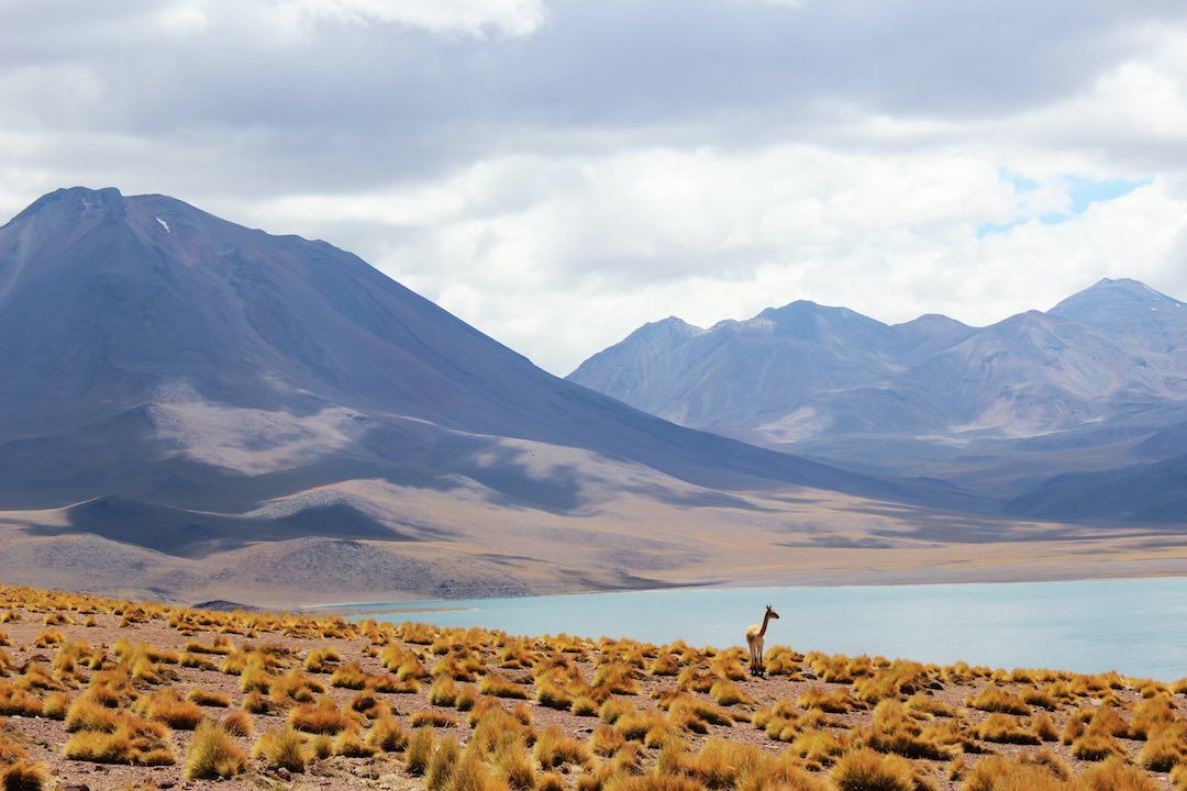 solo travel in south america chile