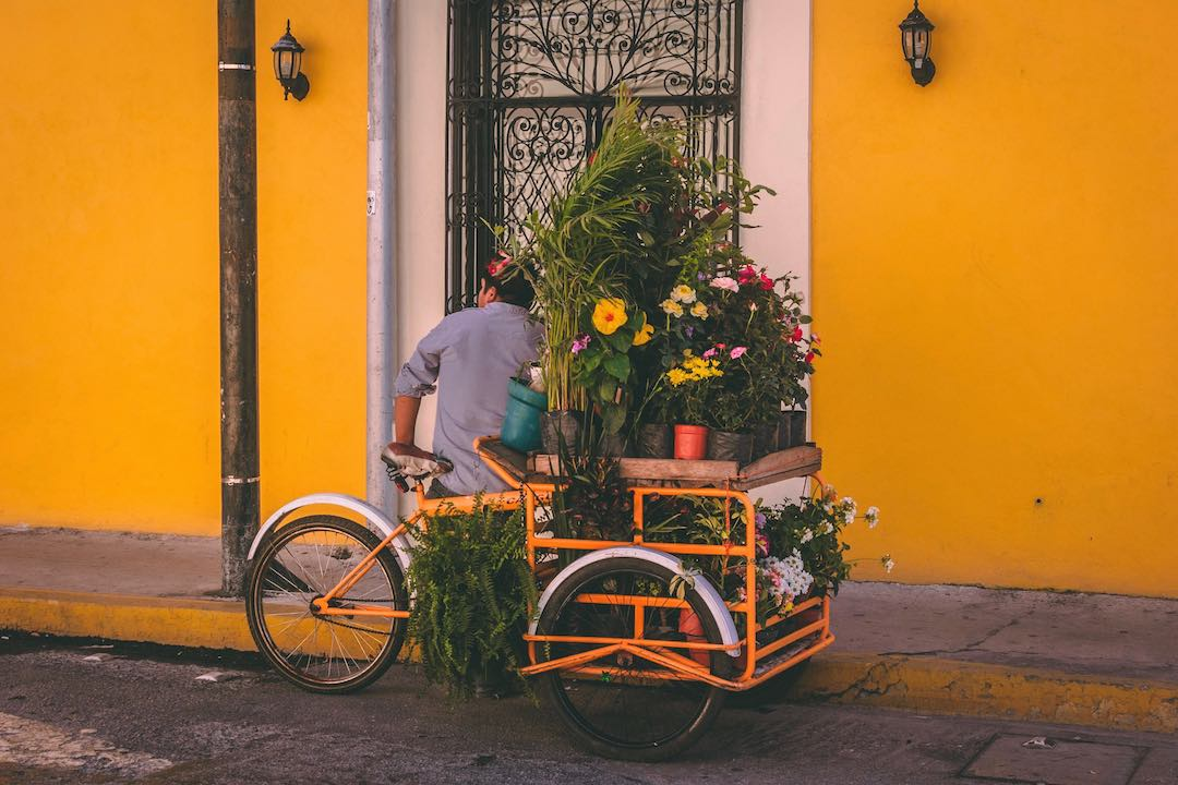 solo travel to Mexico Merida